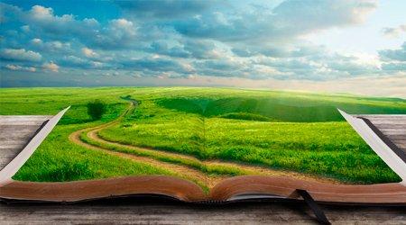 инструкция к жизни, как жить, как быть счастливым, жизненные уроки, жизненный путь, куда идти по жизни, раздражают люди, дорога к себе, моя новая жизнь, как изменить жизнь, как изменить себя