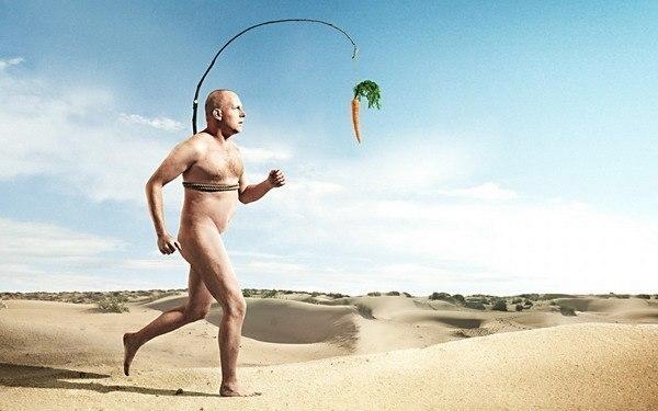 человек бежит за морковкой, погоня за иллюзиями, идти за чужой целью, достигать чужую цель, преследовать чужую цель, быть рабом чужой воли, найти свой путь в жизни