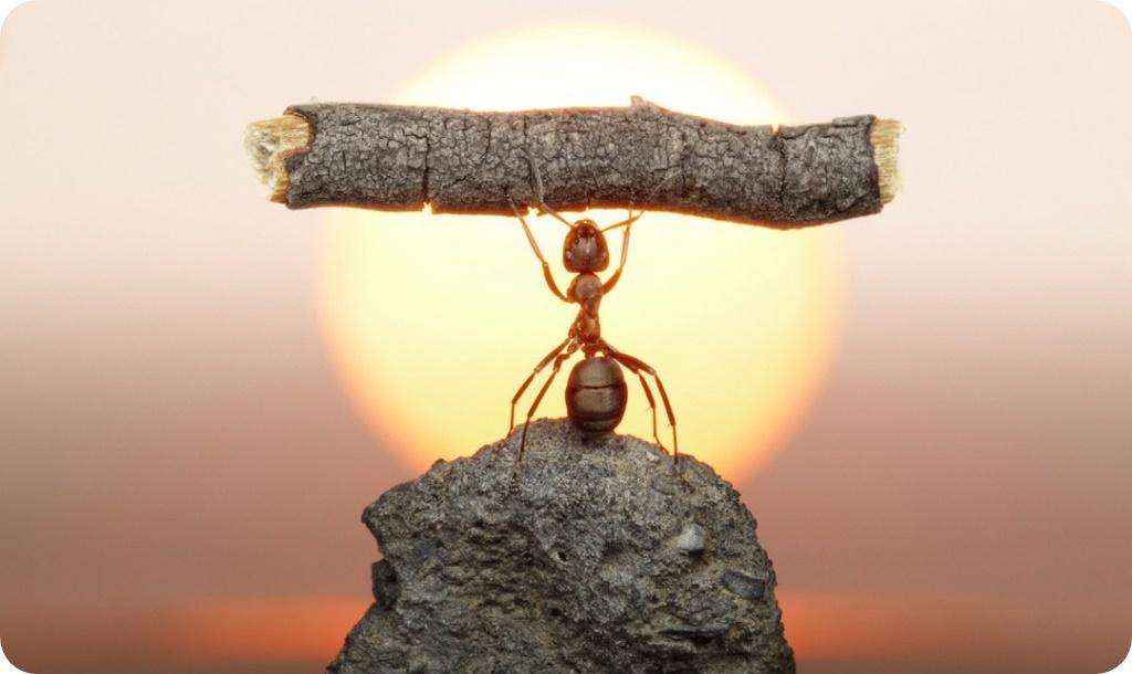 как поверить в себя и свои силы, поверить в собственные силы, обрести силу, обрести внутреннюю свободу, вера в себя, как стать сильным