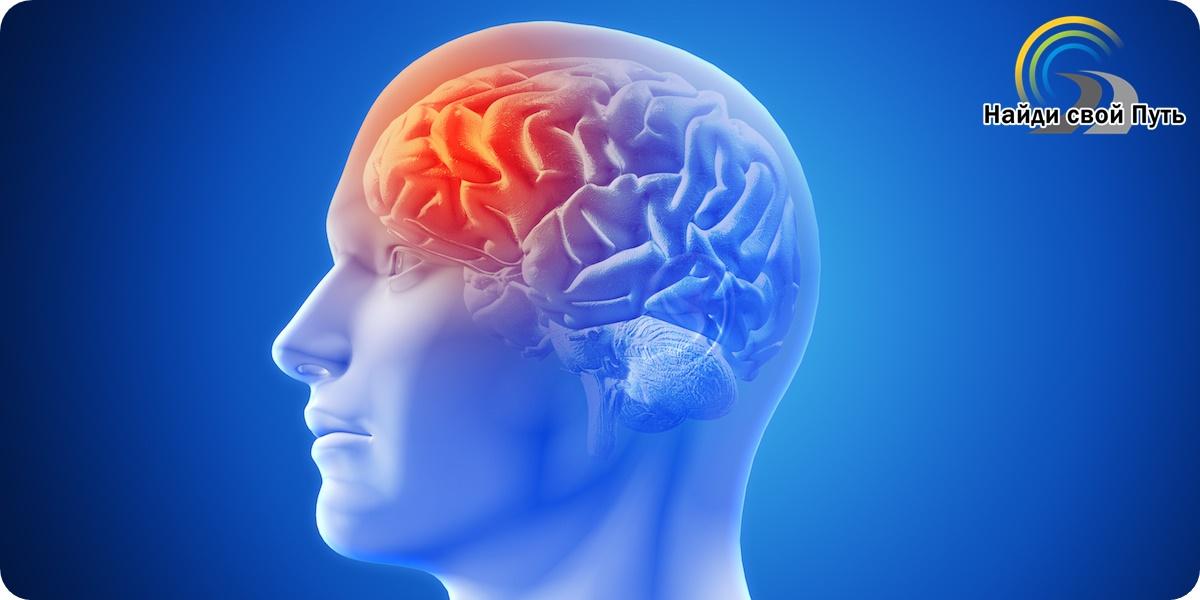 как развивать мозги, как развить мозг, как развивать свои мозги, упражнения для развития мозга, упражнения для тренировки мозга, простые упражнения для развития мозга, упражнения для развития полушарий мозга, упражнения для развития обоих полушарий мозга, тренировка мозгов, тренировка мозгов игры, тренировка мышления, развитие памяти, левополушарное мышление, поиск себя, работа с подсознанием